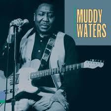 muddywaters2